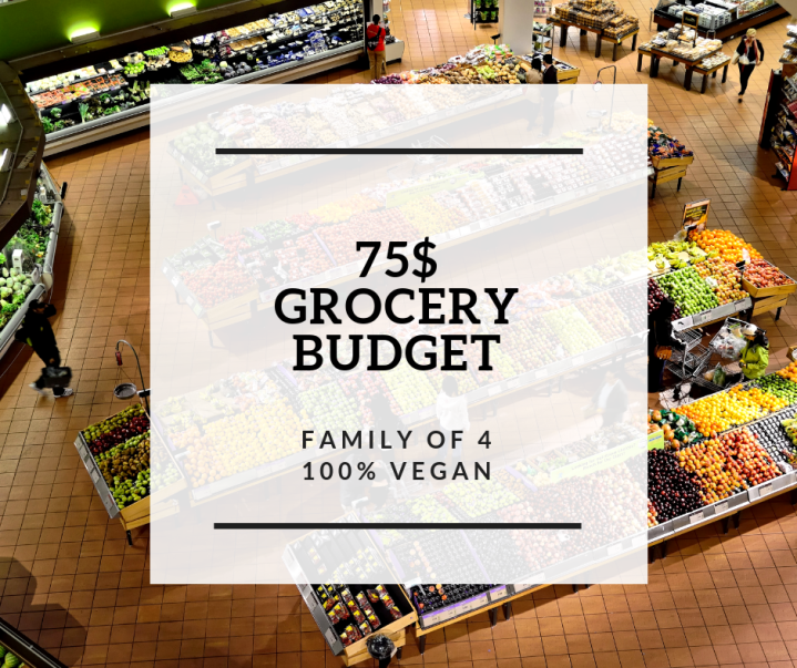 75$ grocery budget – Is it possible?