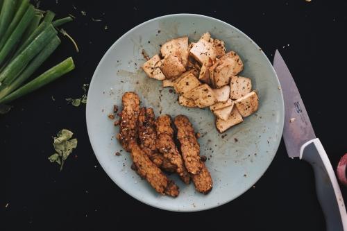 tofu-tempeh.jpg
